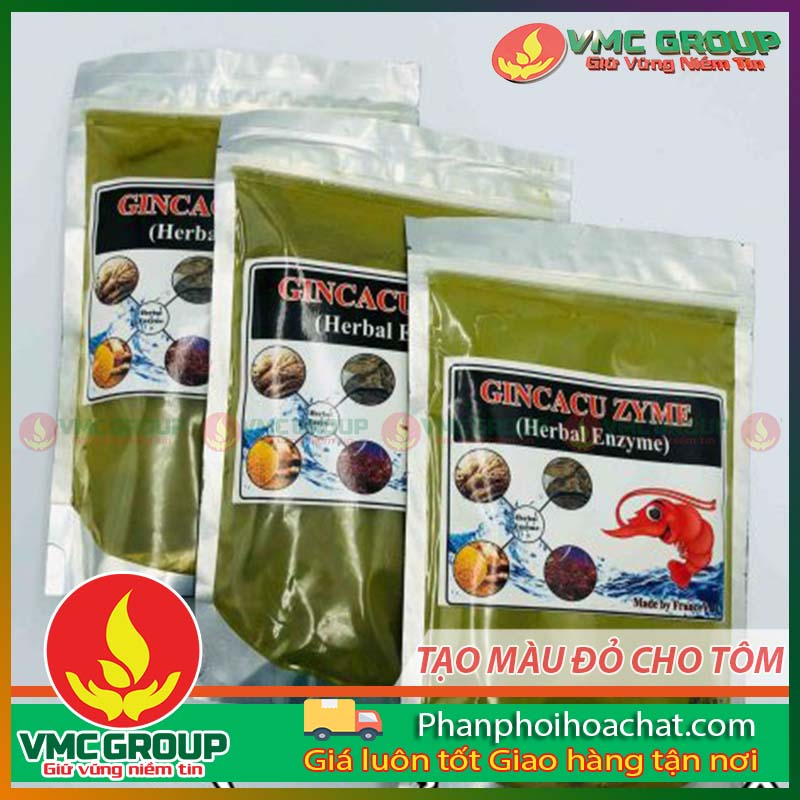 gincacu-zyme-herbal-enzyme-tao-mau-do-cho-tom-2-pphc