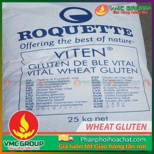 https://phanphoihoachat.com/san-pham/chat-ket-dinh-tao-dai-wheat-gluten-pphc/
